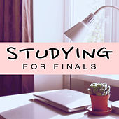 Studying For Finals von Various Artists