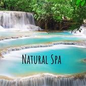 Natural Spa de Various Artists