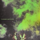 Heavy Smoke de DJ Concept