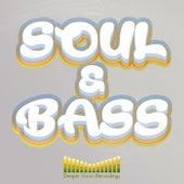 Soul & Bass de Various Artists