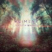 FOREST OF WISHES (REMIXES) de Kliment