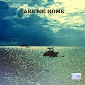 Take Me Home de Crowe