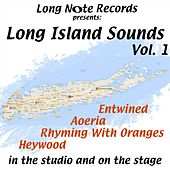 Long Island Sounds, Vol. 1: In the Studio and on the Stage by Various Artists
