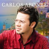 Classical Hits by Carlos Aponte