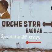 Specialist in All Styles von Orchestra Baobab