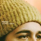 Morada by Afonso Cabral