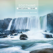 Soothing Natural Tone by Various Artists