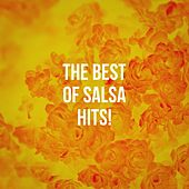The Best Of Salsa Hits! von Various Artists