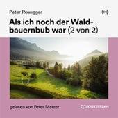 Als ich noch der Waldbauernbub war (2 von 2) von Peter Rosegger