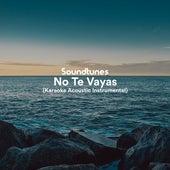 No Te Vayas (Karaoke Acoustic Instrumental) de Soundtunes