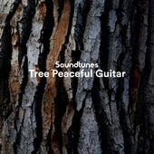 Tree Peaceful Guitar de Soundtunes