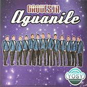Orquesta Aguanile de Orquesta Aguanile