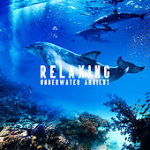 Relaxing Underwater Ambient (Soothing Music for Deep Sleep, Therapy, Meditation, Stress Relief) by Various Artists