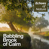 Babbling Brook of Calm by Echoes of Nature