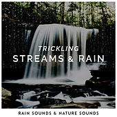 Trickling Streams & Rain by Rain Sounds