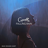 Gentle Falling Rain by Various Artists