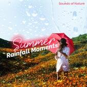 Summer Rainfall Moments de Various Artists