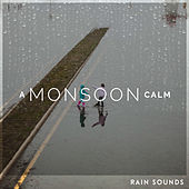 A Monsoon Calm by Rain Sounds