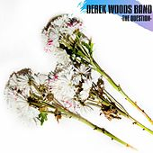 The Question by Derek Woods Band