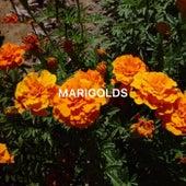 Marigolds von Moon