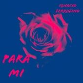 Para Mi (Remix) von Ignacio Ferrufino