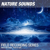 Nature Recordings - Forest at night by Nature Sounds (1)