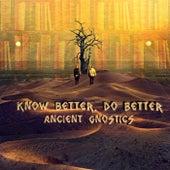 Know Better, Do Better von Ancient Gnostics