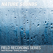Nature Recordings - Soothing rain weather by Nature Sounds (1)