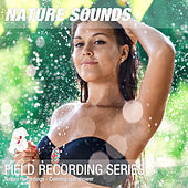 Nature Recordings - Calming rain shower by Nature Sounds (1)