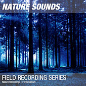 Nature Recordings - Forest dream by Nature Sounds (1)