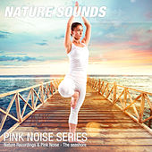 Nature Recordings & Pink Noise - The seashore by Nature Sounds (1)