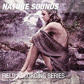 Nature Recordings - Calming autumn rain by Nature Sounds (1)
