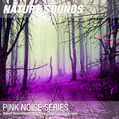 Nature Recordings & Pink Noise - Mystical forest creek by Nature Sounds (1)