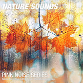 Nature Recordings & Pink Noise - Peaceful autumn rain by Nature Sounds (1)