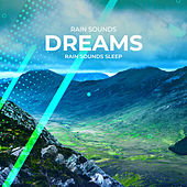 Rain Sounds Dreams by Various Artists
