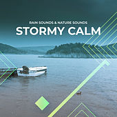 Stormy Calm by Rain Sounds
