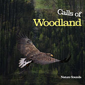 Calls of Woodland by Nature Sounds (1)