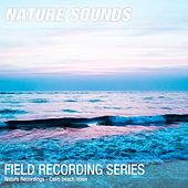 Nature Recordings - Calm beach noise by Nature Sounds (1)