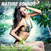 Nature Recordings - Soothing rain & crickets by Nature Sounds (1)
