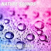 Nature Recordings & Brown Noise - Calm jungle rain & thunder by Nature Sounds (1)