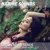 Nature Recordings & Brown Noise - Peaceful red forest by Nature Sounds (1)