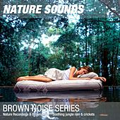 Nature Recordings & Brown Noise - Soothing jungle rain & crickets by Nature Sounds (1)
