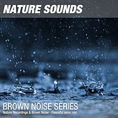 Nature Recordings & Brown Noise - Peaceful asmr rain by Nature Sounds (1)