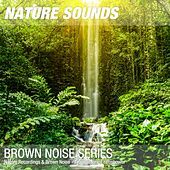 Nature Recordings & Brown Noise - Tropical forest rainshower by Nature Sounds (1)