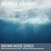 Nature Recordings & Brown Noise - Hydrophone underwater sounds asmr by Nature Sounds (1)