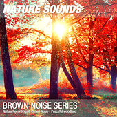 Nature Recordings & Brown Noise - Peaceful woodland by Nature Sounds (1)