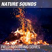 Nature Recordings - Calming fire sounds by Nature Sounds (1)
