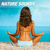 Nature Recordings & Brown Noise - Day at the beach by Nature Sounds (1)