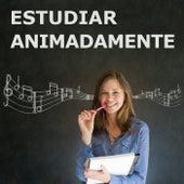 Estudiar Animadamente de Musica Para Estudiar Academy