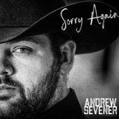 Sorry Again by Andrew Sevener